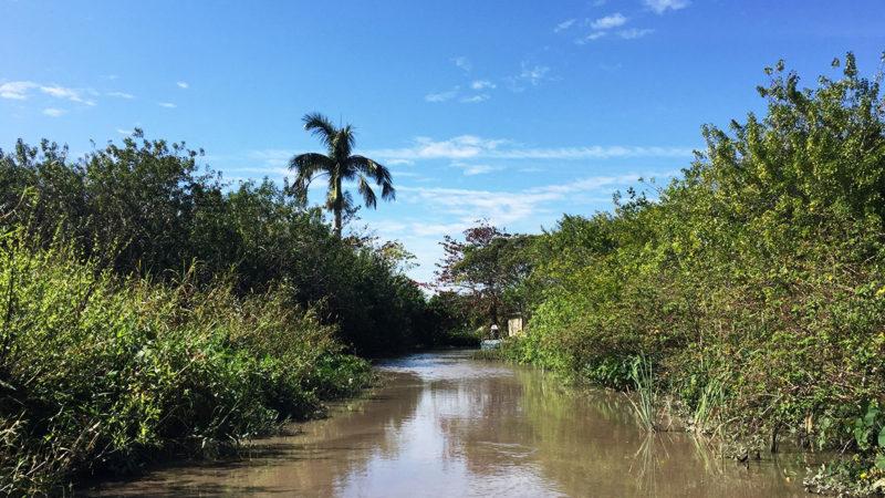 Everglades Alligator Farm Florida Miami - Airboat